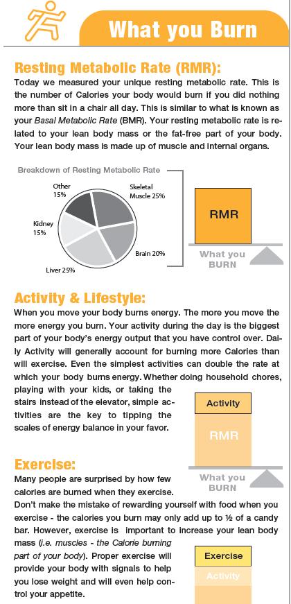 fitmate brochure doc